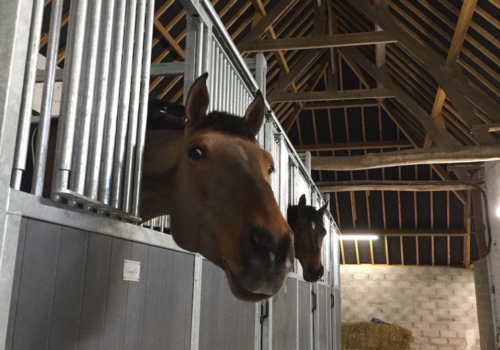 header-gite-equestre-1