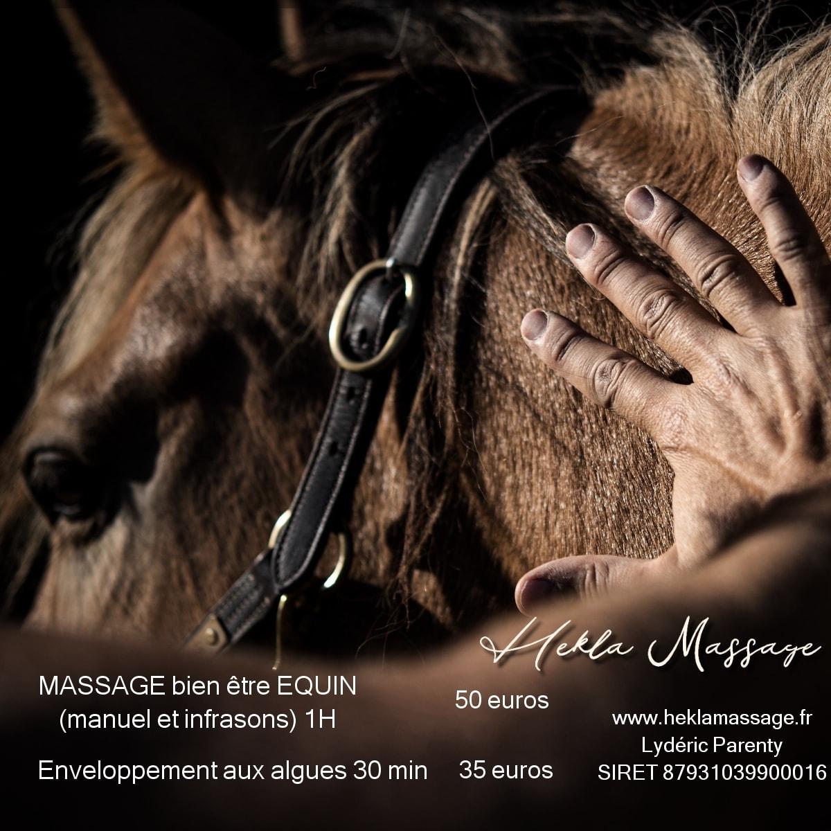 masage-equin